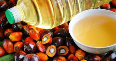 Импорт пальмового масла в России снижается