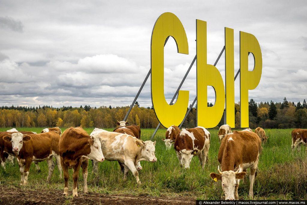 Сыроварня Олега Сироты